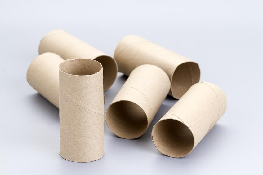 Brown empty toilet tissue paper rolls